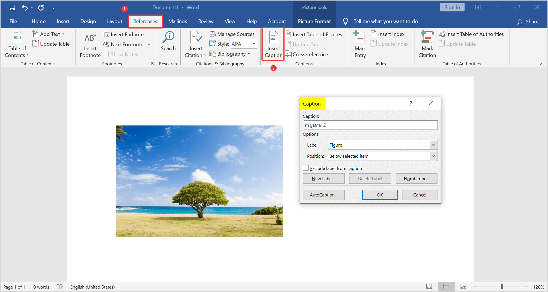 how to add a caption to a photo in word