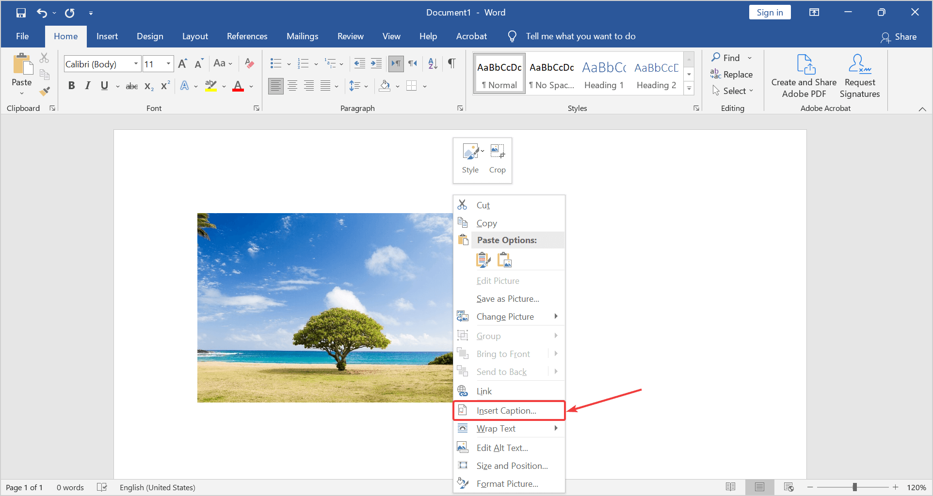 how to add caption to picture in word