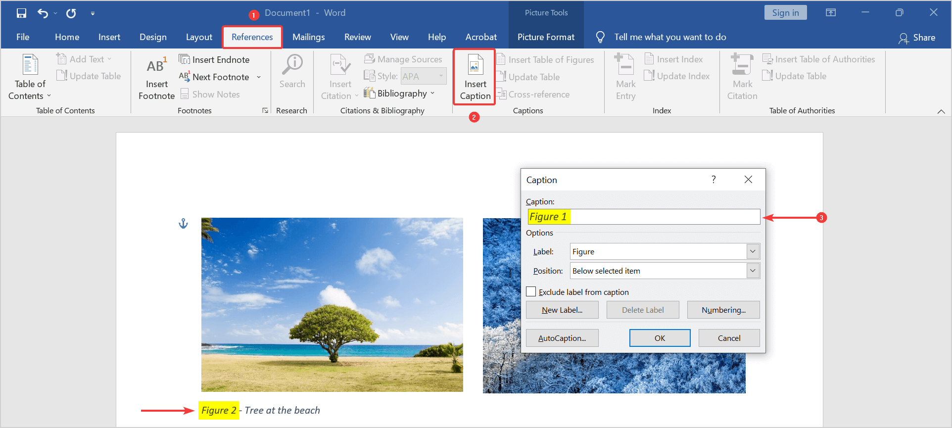 Figure 1 caption in text box wrong, because the picture is set with text wrapping