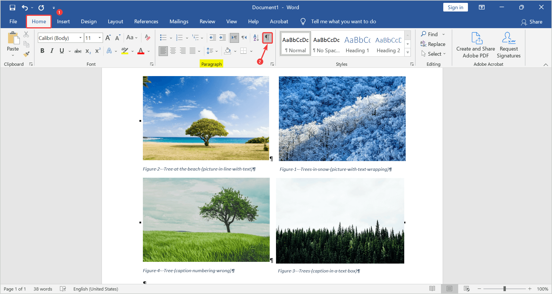 Click on the paragraph button to see the paragraph in the word document